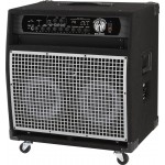 SWR WorkingPro 2x10 Bass Speaker Cabinet