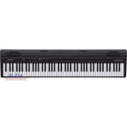 Roland GO:PIANO GO-88P 88-Key Portable Digital Piano w/Bluetooth Speakers