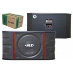 Speaker Karaoke Ashley BS-998