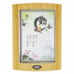 Soundking P2H Flat Panel Speaker