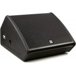 "Turbosound TFM152M-AN 15"" Flashline Series 2-way Stage Monitor"